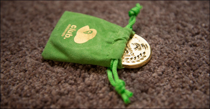 Year-of-Luigi-Coin-In-Bag