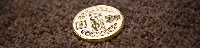 Year-of-Luigi-Coin